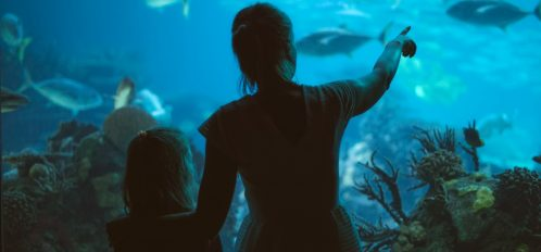 Woman and her daughter in the aquarium.