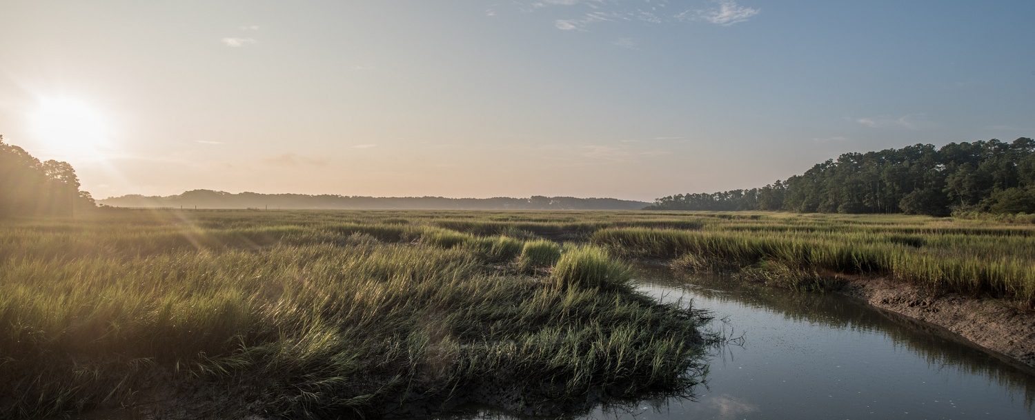 Green and blue sunrise view over the tidal marsh near Hilton Head South Carolina.